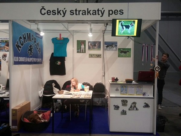 Evropská výstava Brno 2014- 2